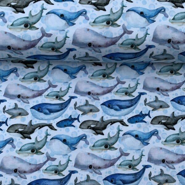 Jersey Baumwolle Wale