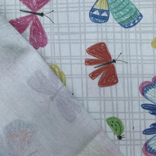Halbpanama Schmetterlinge
